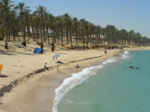 El-Arish Travel Guide